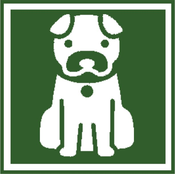 CAT_icon_green
