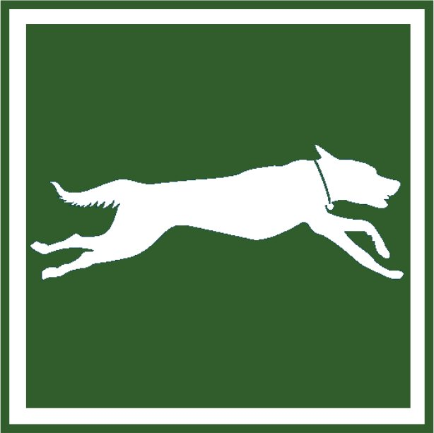 FAST_CAT_icon_green